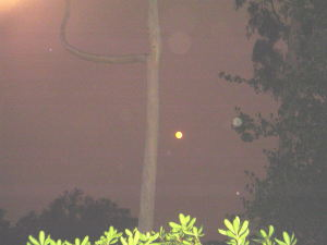 07-10-24-SmokyMoon
