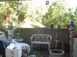 07-12-17-Backyard