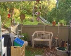 backyard-07-09-08