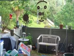 backyard-07-09-22